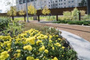 dsc03544_govenors_garden